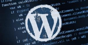 Fichier pro wordpress