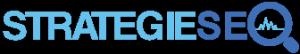 Logo stratégie seo 1